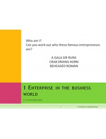 Unit 1 Enterprise in the Business World