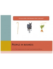 Cambridge O Level Business Studies Topic 2 People in Business Multimedia